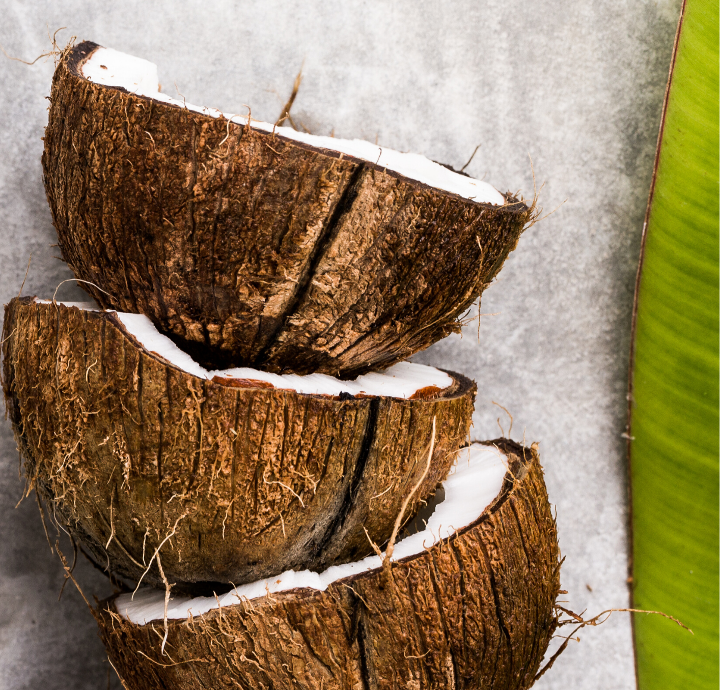 Coconuts MCT oil